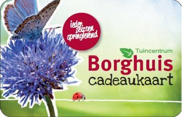 Kadotips tuincentrum borghuis in deurningen for Borghuis deurningen
