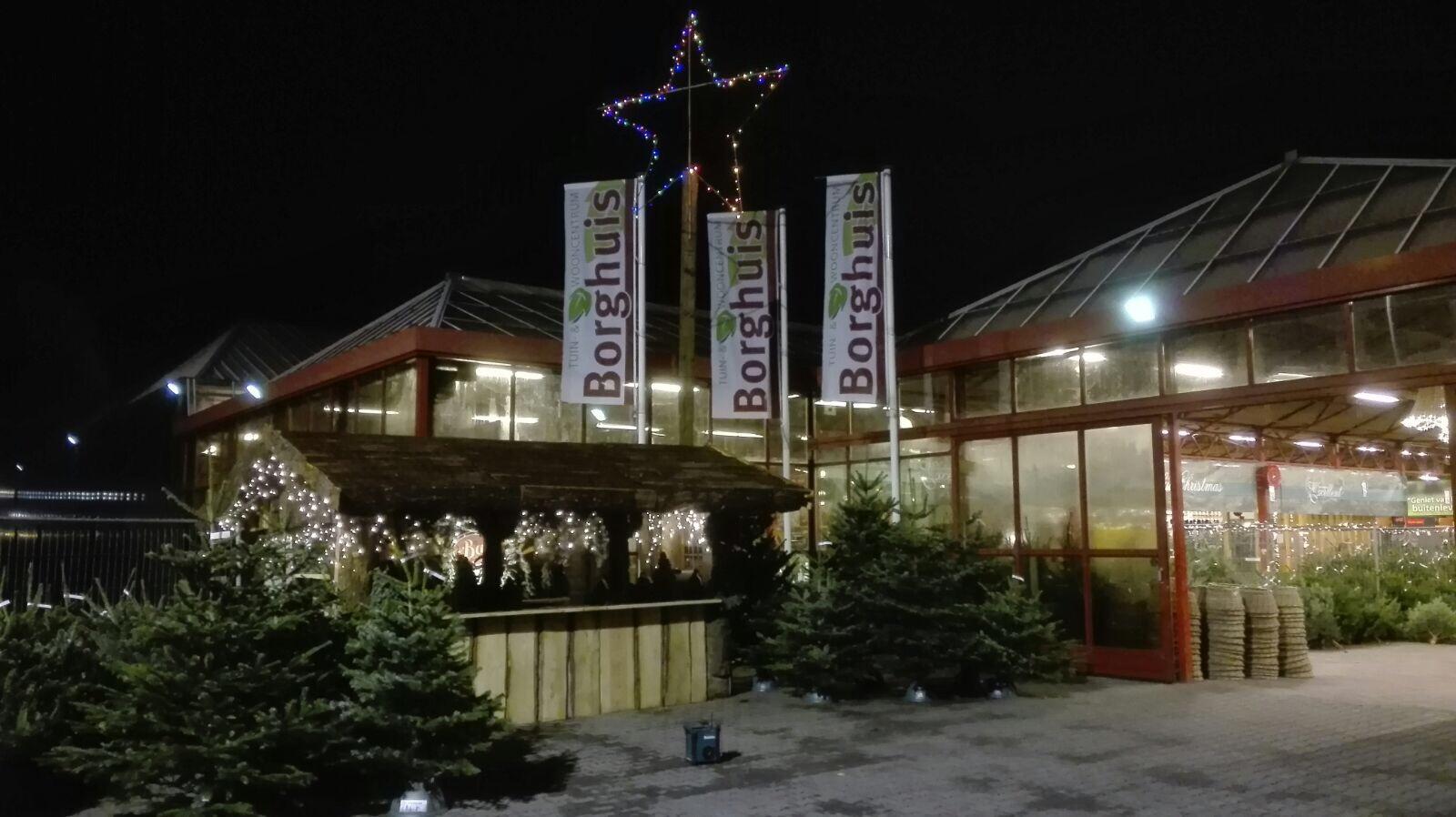 Kerstbomen reisverslag nieuws tuincentrum borghuis in for Borghuis deurningen