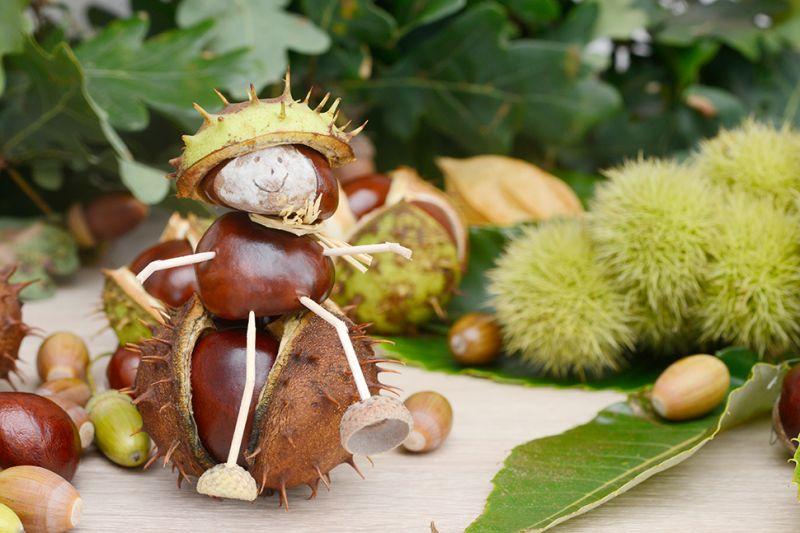 Tips voor de herfstvakantie! Tuincentrum Borghuis