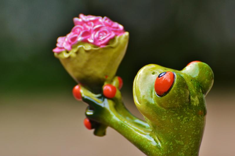 valentijnsdag-bloemen-kaartjes-en-nog-veel-meer-liefs_n.jpg